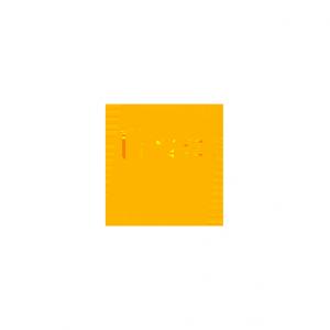igm_0028_fnac
